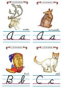 Flash Card Cursive Alphabet A to C