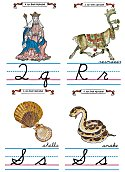 Flash Card Cursive Alphabet Q to S