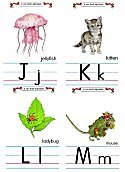 Flash Card Traditional Alphabet J to M