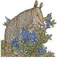 Free Knitting Pattern Armadillo Cloth - Crocheting Patterns, Knit