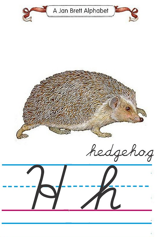 Cursive alphabet H hedgehog