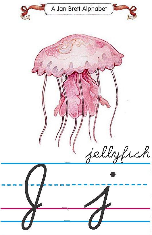 alphabet J jellyfish