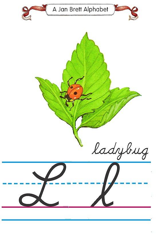 alphabet L ladybug
