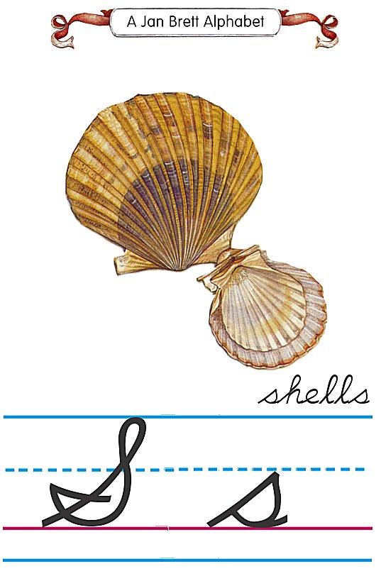 cursive alphabet s shells
