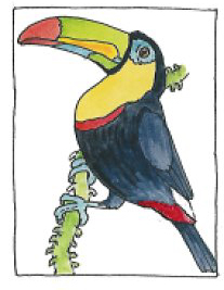 Forest Toucan Coloring Page