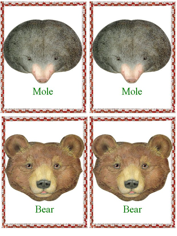 Matching Animals Game Mole And Bear