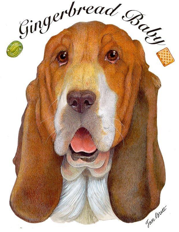 Gingerbread Baby Bassett Hound