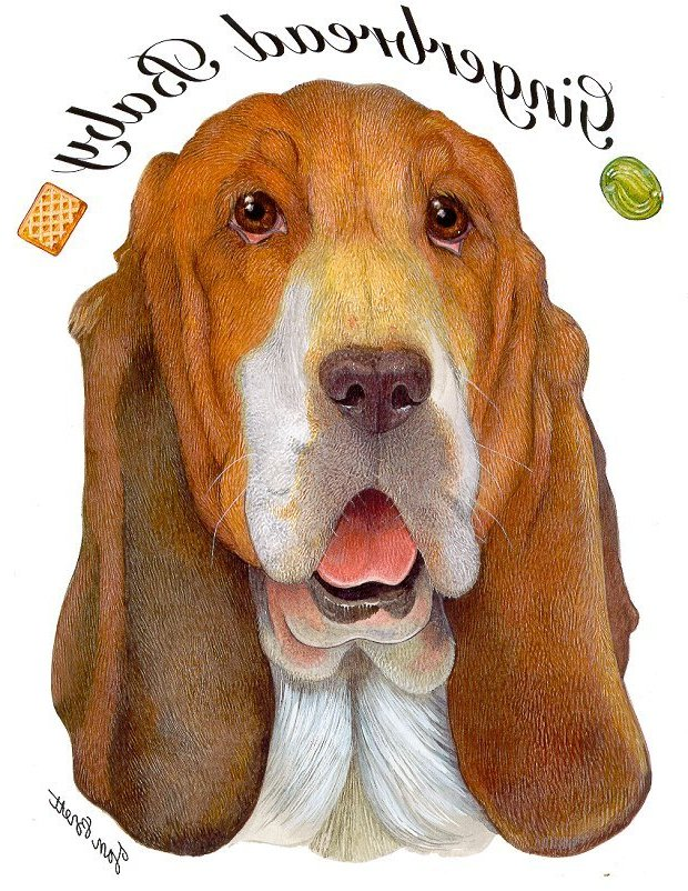 Gingerbread Baby Transfers - The Basset Hound