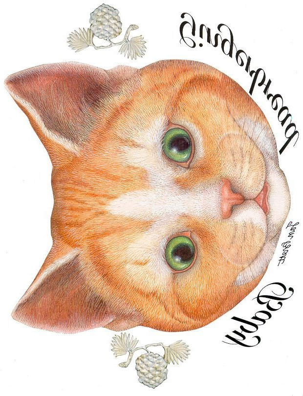 Gingerbread Baby Transfers - The Cat