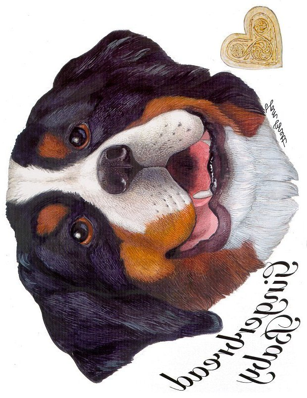 Gingerbread Baby Transfers - The Bernese Dog