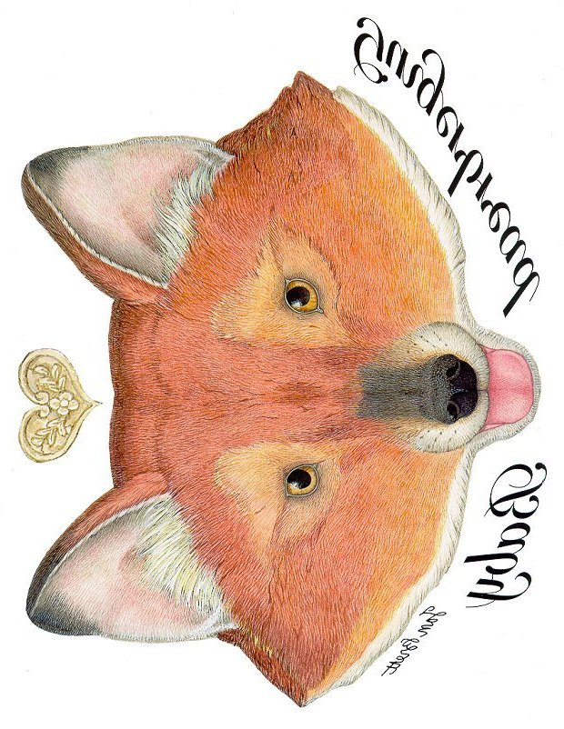 Gingerbread Baby Transfers - The Fox