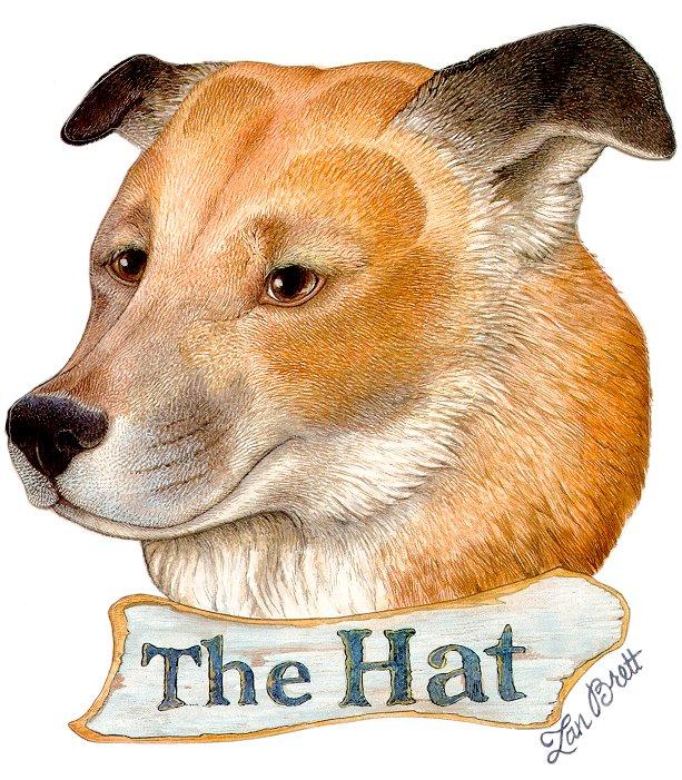Jan Brett The Hat