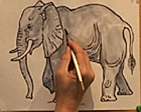 How to Draw and Elephant 3