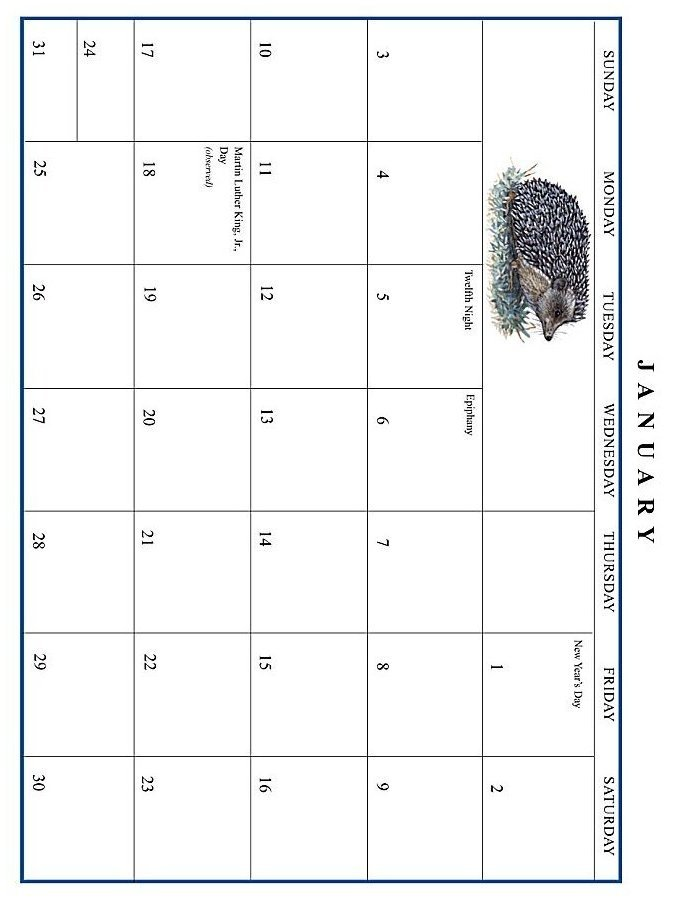 Jan Brett 1999 Calendar - January grid