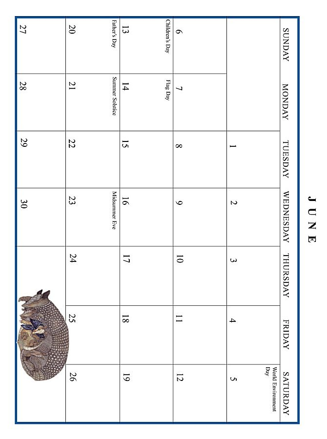 Jan Brett 1999 Calendar - June grid