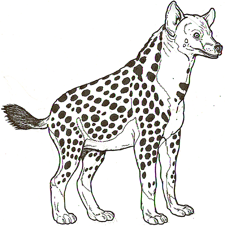 Hyena Coloring Pages Coloring Pages