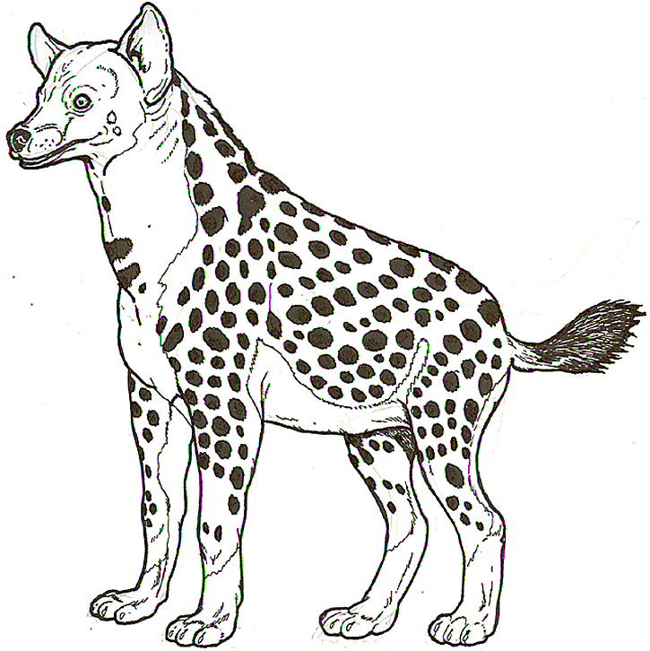 Free Coloring Pages Of African Savannah Hyena Coloring Pages