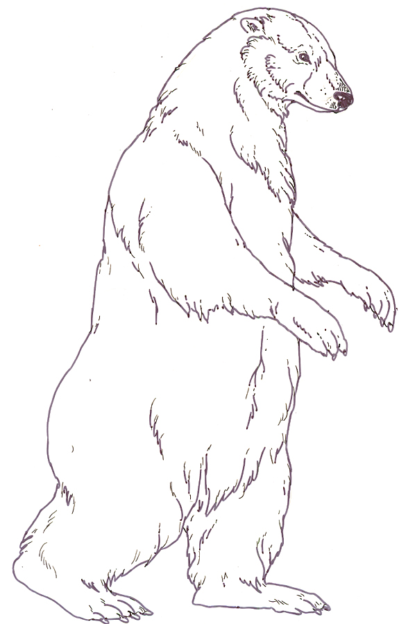 Three Snow Bears Mother Bear reversed