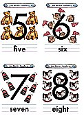 Flash Card Numbers 5 to 8
