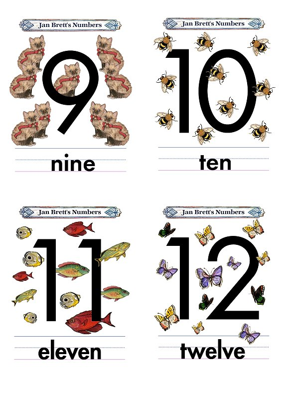 Numbers Flash Cards 9 to 12