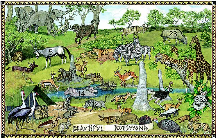 On Noah's Ark Botswana Animals