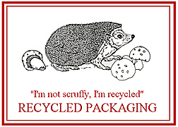 Recycled Packaging
