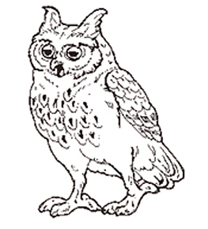 The Owl coloring page