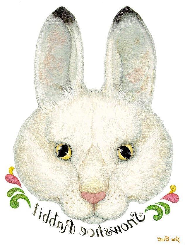 The Mitten Transfers Rabbit