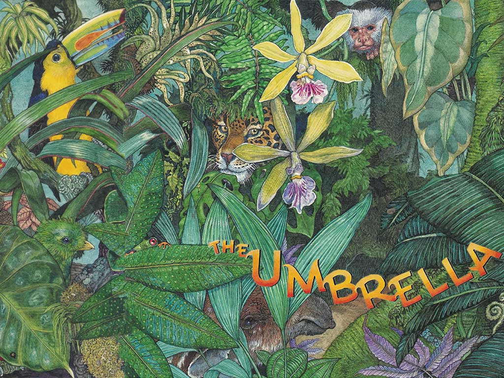 The Umbrella By Jan Brett, free PDF download