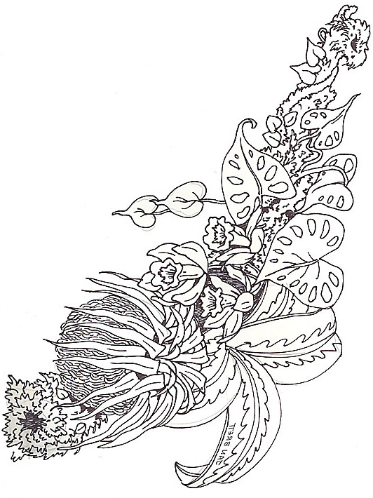 Elan Damerique additionally Drawing Pictures Of Garden in addition 545357836117716736 also Desene De Colorat Animale Salbatice Cerb further Stock Illustration Doodle Heart Mandala Coloring Page Outline Floral Design Element Shape Coloring Book Pattern Decorative Round Flower Image76609730. on coloring pages for adults deer